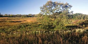 About-Elgin-Township-Illinois